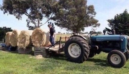 Large Grass Hay Bales For Sale!