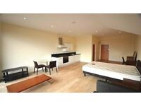 Modern Studio Flat Furnished £965 PCM Including All Bills + Council tax Bracknell DSS Accepted