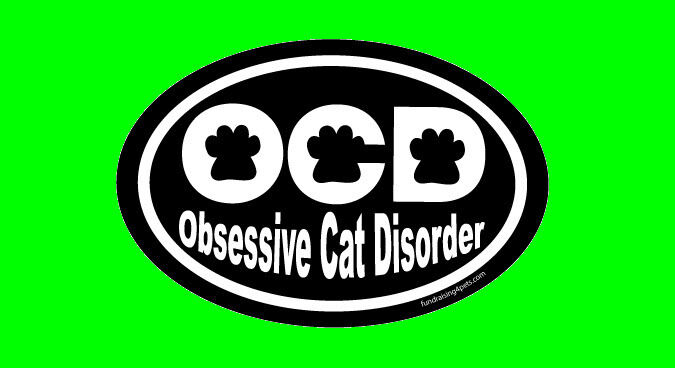 O C D - OBESSIVE CAT DISORDER - OVAL MAGNET,Dog Cat Pet Rescue Charity