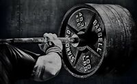 Personal Training & Weight Loss Coaching $35
