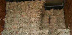 Hay-Horse hay Square Bales @ $5.00 per bale.