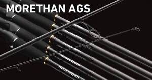 Daiwa Morethan Spinning Rods 86LLX-W, 92L-W, AGS 92L Petersham Marrickville Area Preview