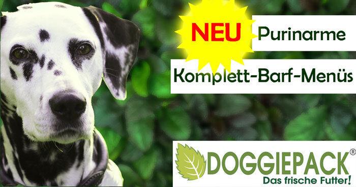 Purinarmes Hundefutter + Komplett BARF Menü + Leishmaniose beim Hund
