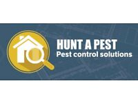 HUNT A PEST All pest control solutions covered