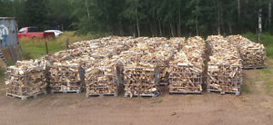 Ignite Firewood- Top Quality Firewood in Pigeon Lake area