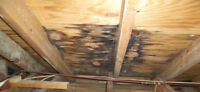 NEED ROOF REPAIRS FAST? GIVE US A CALL 7/7