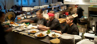Experienced Line Cooks / Dish Washers / Experienced Servers