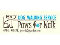 Profeessional Dog Walking and Pet Sitting Service