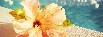 Heavenly Flower Jewelry
