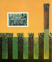 Aérateur de pelouse, aération, déchaumage, engrais gazon  Mardi