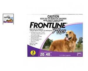 6 Pack of Frontline Plus Large Dog 20-40kg Ipswich Ipswich City Preview