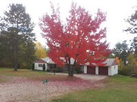 House for Rent Barry's Bay - Madawaska Valley $1200/month
