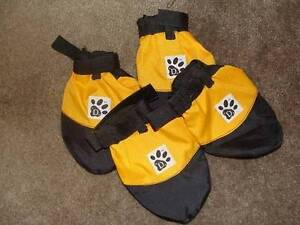 dog booties Large Albany Albany Area Preview
