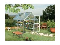 Mill Poly twin-walled 6 x 10ft Greenhouse