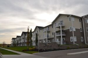"""""""$500.00 New Years Rent Incentive –Rent with Laebon"""""""