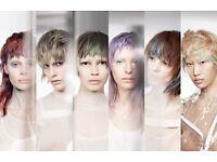 FREE HAIR MODEL