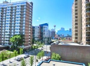 Fully furnished condo in DT East Village!!