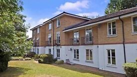 Two Bedroom Flat to Rent £900