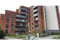 1 bedroom flat in The Vibe 175 Broughton Lane, Salford, M7 (1 bed) (#905323)