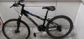 Gaint adult bike