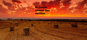 HAY Cutting/baling services, St Joseph