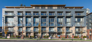 $115 / 2br - 800ft2 - **Two Storey Penthouse Suites In Hudson's