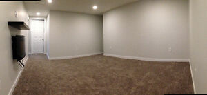 Beautiful, New & Spacious Basement in McQueen - March 1st