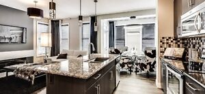 Beautiful Duplex - Select your own interior colors!! Edmonton Edmonton Area image 1