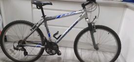 Mongoose adult bike