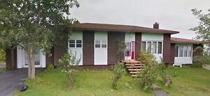 134 Country Road, Bay Roberts, NL - MLS# 1152825 & 1152826