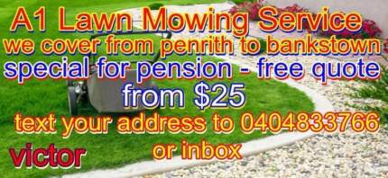 A1 Lawn Mowing Service