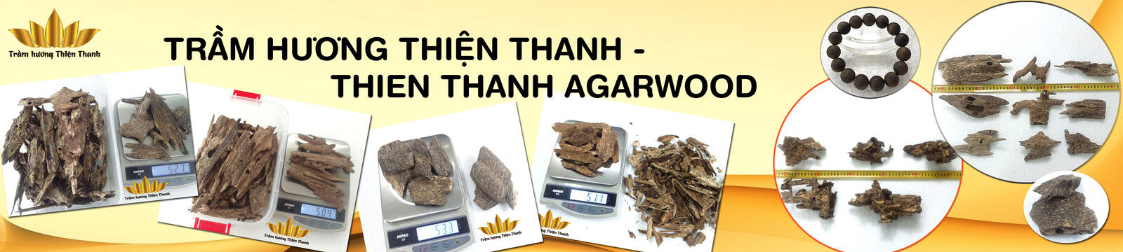 Agarwood Chips (Oud) Thien Thanh