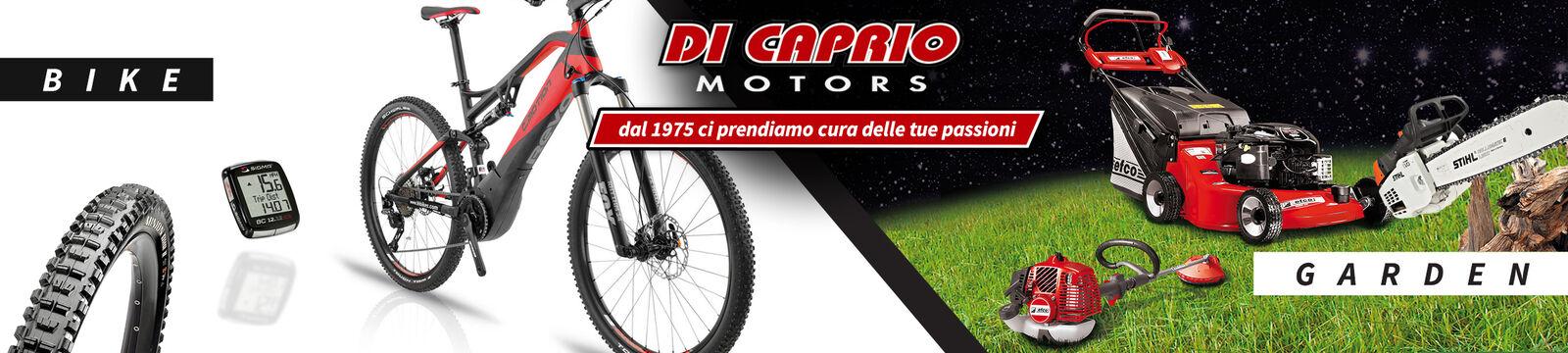 DI CAPRIO MOTORS Store