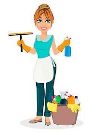 Domestic Cleaner, housekeeper