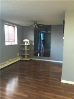 Absolutely Gorgeous 2 B/R Condo at Prime Location