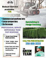 Snow removal and Bobcat for hire