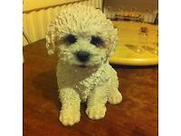 Immaculate: Bichon Frise Puppy Ornament