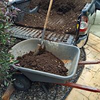 Yard cleaning / Hauling
