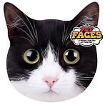 Pet Faces Katten kussens Exotic