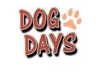 DOG DAY,S DOG WALKING & PETSITTING SERVICES, GARTHDEE.