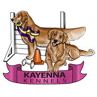 Basic Dog Obedience Classes (Dogs 6+ Months) !!STARTING SOON!!