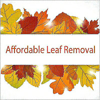 Leaf Removal & EavesTrough Cleaning & Repair
