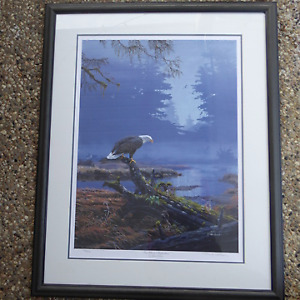Beautifully Framed Wildlife Prints