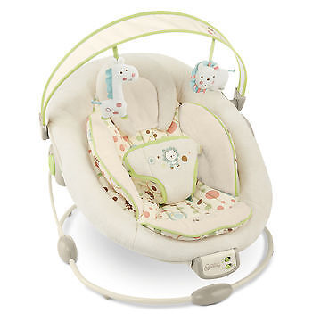 How to Buy a Baby Bouncer on eBay