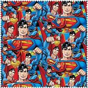 Superman Fabric