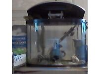 Aquarium. D shaped, 25 litre tropical fish tank/ power accessories with many extras