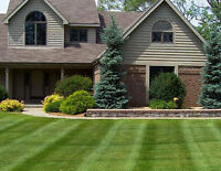 Landscaping Services at Reasonable Price
