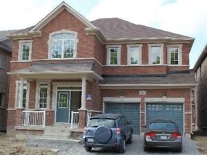 Newmarket 4 Bed Single House For Rent