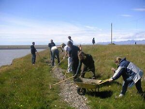 Volunteer in Iceland Edmonton Edmonton Area image 3