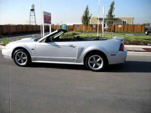 Wanted 02-07 Mustang GT 5 speed